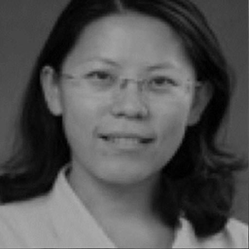 Dr Xiuli Sun